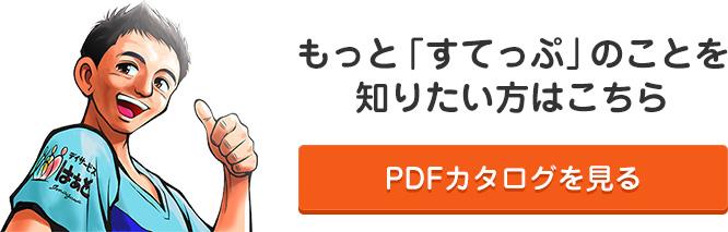 すてっぷカタログPDF